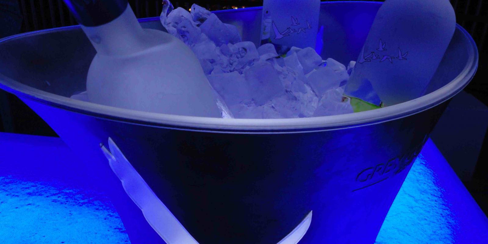 Image décrivant le produit Grey Goose qui fait partie des Vodkas