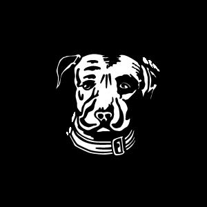 Logo de la marque concernant au produit Lagunitas