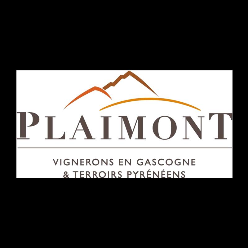"""Logo de la marque concernant au produit IGP Côtes de Gascogne """" XVIII ST LUC """" 12cl"""