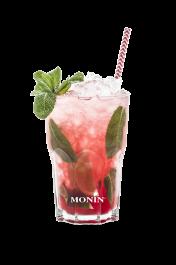 Image du packaging du produit Mojito Fraise / Framboise