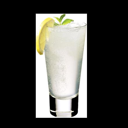 Image du packaging du produit Gin Fizz